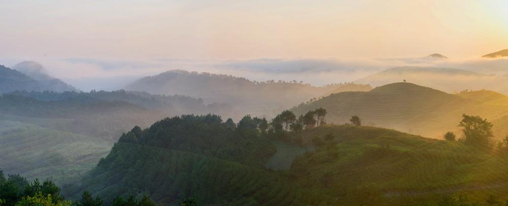 好消息, 花乡茶谷旅游度假风景区与武汉团讯科技有限公司达成战略合作